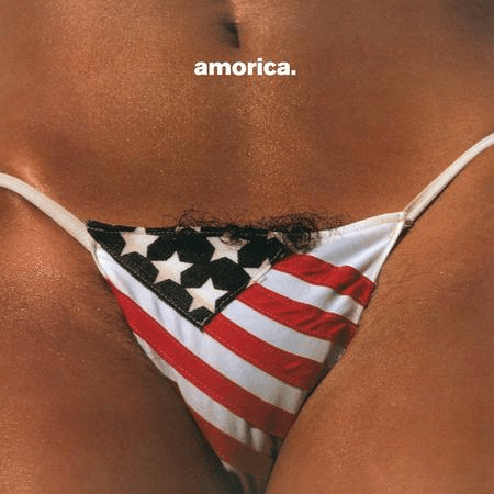 The Black Crowes - Amorica-Dollar Vinyl Club