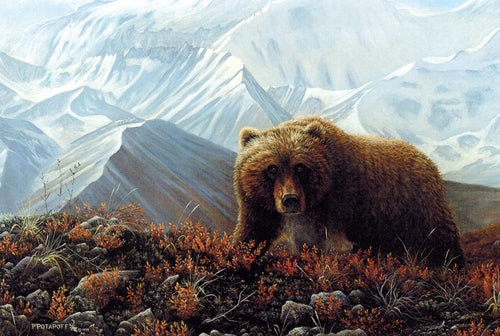 Grizzly - High Tundra