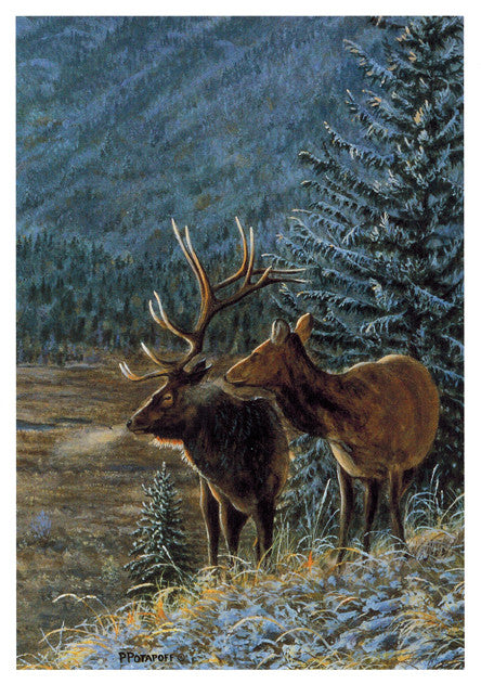 First Snow - Elk