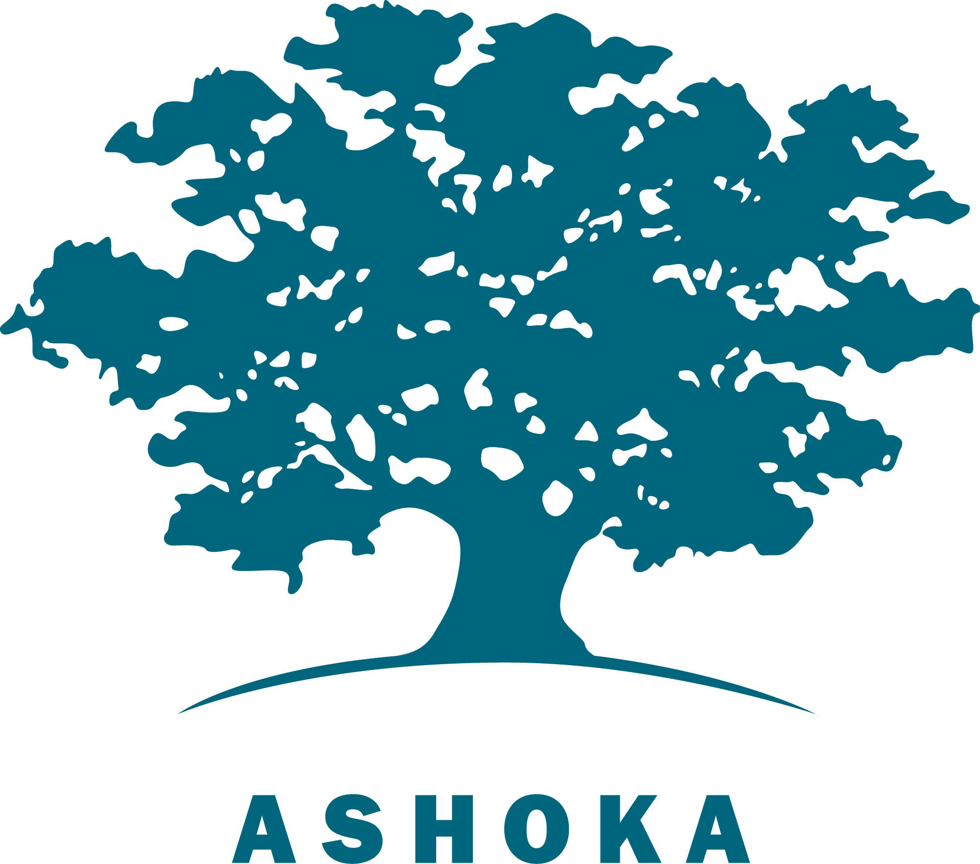 Ashoka: Innovators for the Public logo