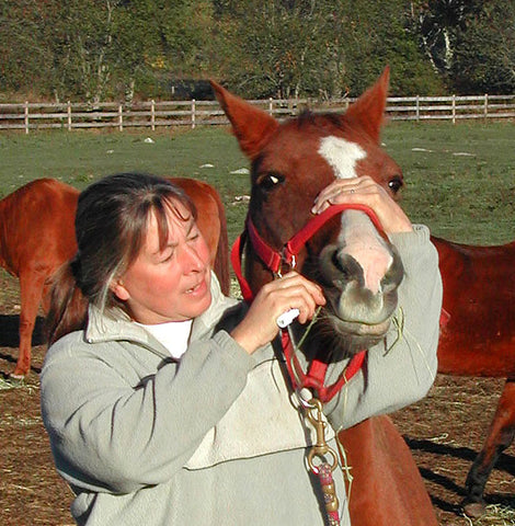 Give a gift that matters: a donation in your friend's name. Your gift will provide one de-wormer treatment for a senior horse helping to assure both their healt