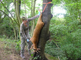 Apex Tree Hugger
