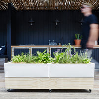 Mobile Self-Watering Raised Cafe Planter for the Urban Garden