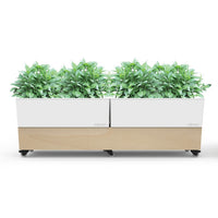 Double White Plastic Planter