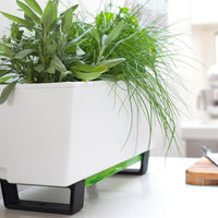Mini Bench Modern Indoor Planter