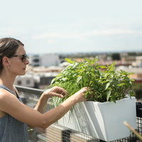 Women Tending to Plants in Modern Balcony Planter