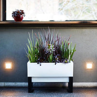 Modern Indoor Planter