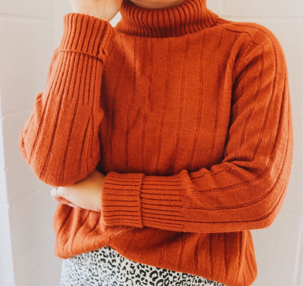 Pumpkin Spice Turtle Neck