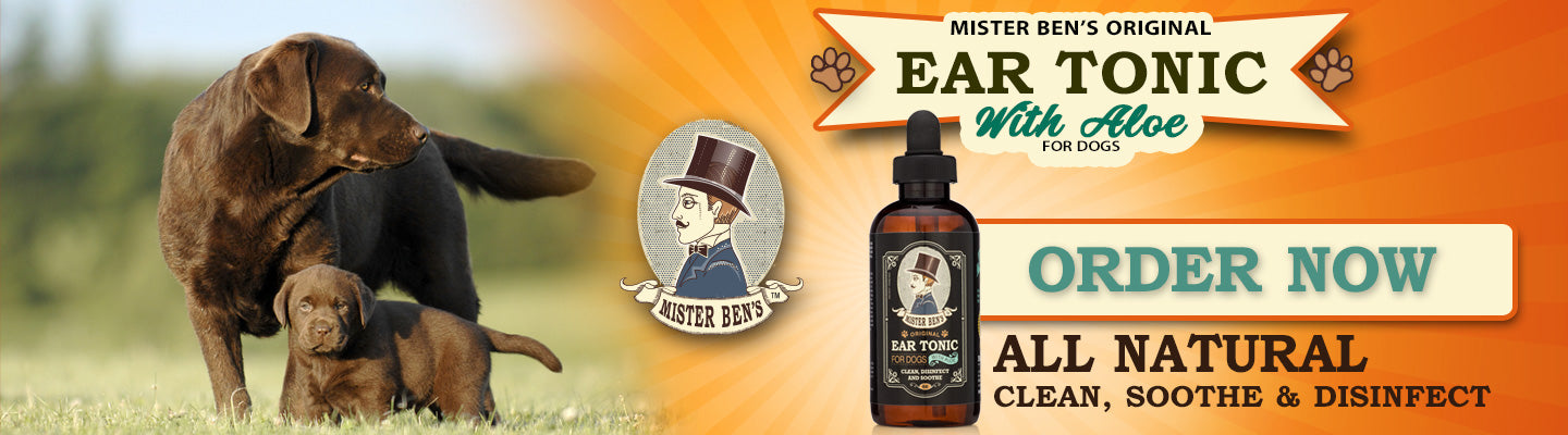 Mister Ben's Original All Natural Ear Tonic for Dogs