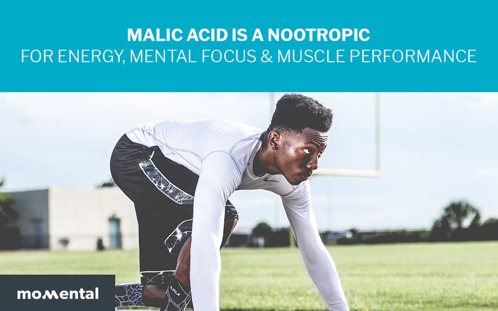 Malic Acid is a Nootropic for Energy, Mental Focus & Muscle Performance | Momental Nootropics