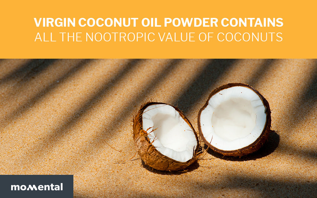 Virgin Coconut Oil Powder Contains All the Nootropic Value of Coconuts | Momental