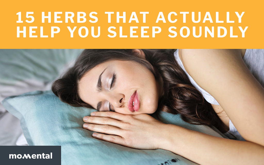 15 Herbs That Actually Help You Sleep Soundly