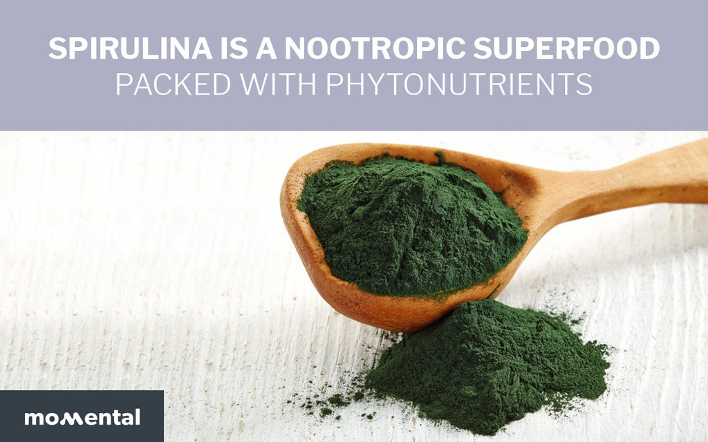 Spirulina is a Nootropic Superfood Packed with Phytonutrients | Momental
