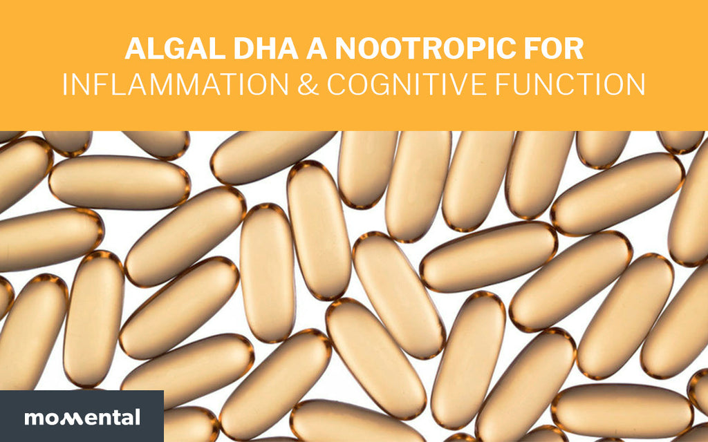 Algal DHA a Superfood for Inflammation & Cognitive Function | Momental Nootropics