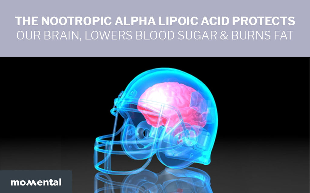 The Nootropic Alpha Lipoic Acid Protects Our Brain, Lowers Blood Sugar & Burns Fat | Momental Nootropics