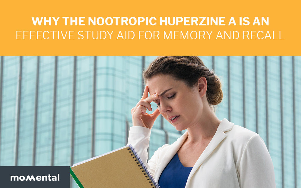 Why the Nootropic Huperzine A is an Effective Study AID for Memory and Recall | Momental Nootropics