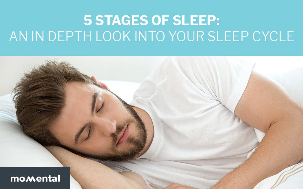 5 Stages of Sleep: An In Depth Look Into Your Sleep Cycle | Momental Nootropics
