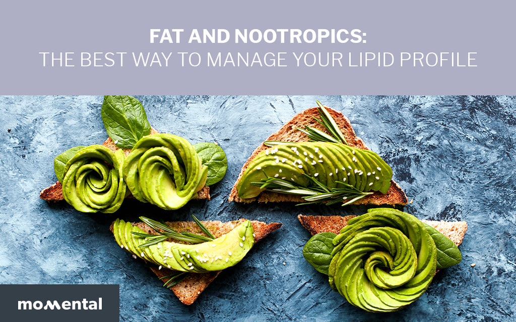Fat and Nootropics: The Best Way to Manage Your Lipid Profile | Momental Nootropics