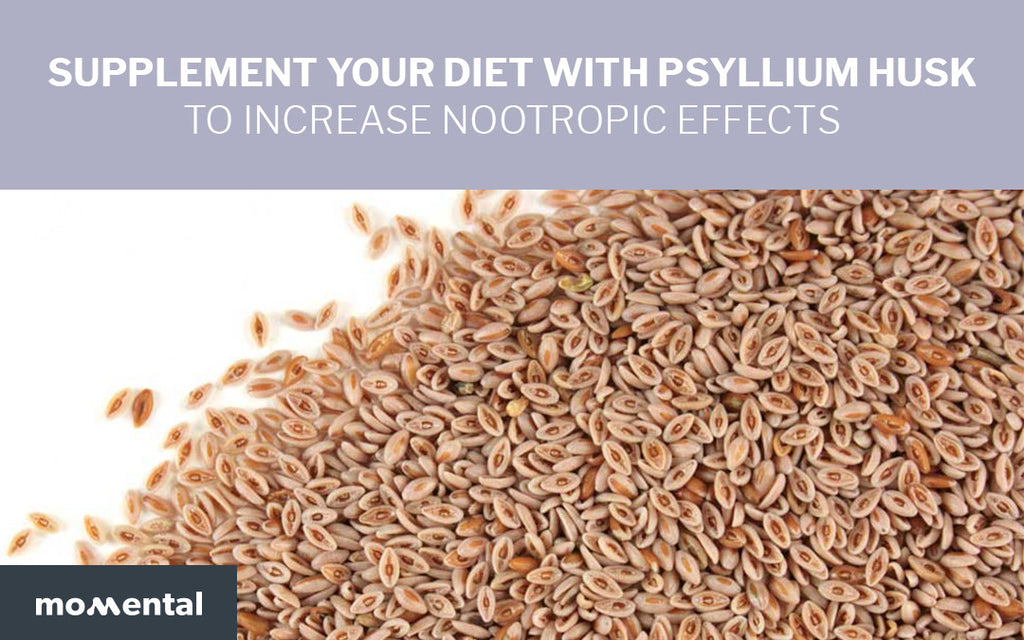 Supplement Your Diet with Psyllium Husk to Increase Nootropic effects | Momental