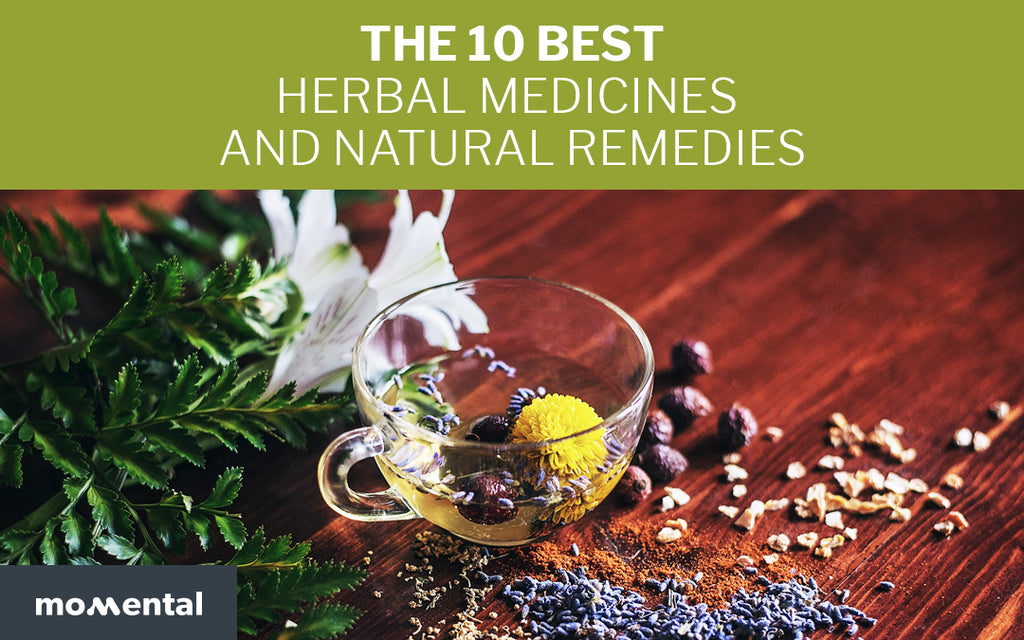 The 10 Best Herbal Medicines and Natural Remedies