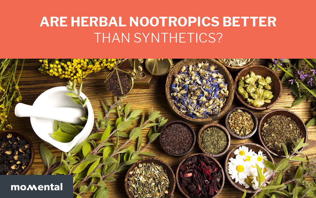 Are Herbal Nootropics Better than Synthetics? | Momental Nootropics