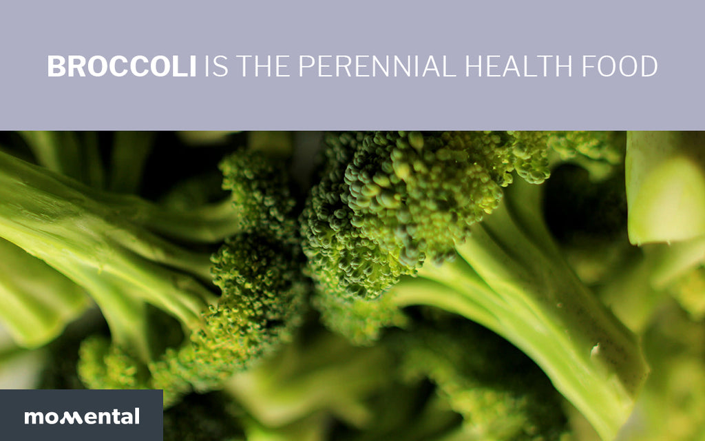 Broccoli Is The Perennial Health Food | Momental Nootropics