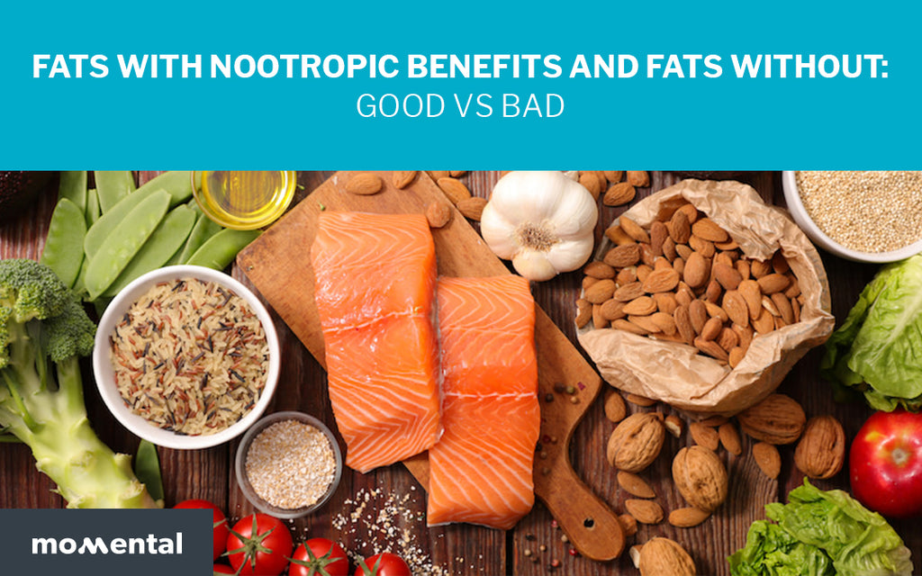 Fats With Nootropic Benefits and Fats Without: Good VS Bad | Momental Nootropics