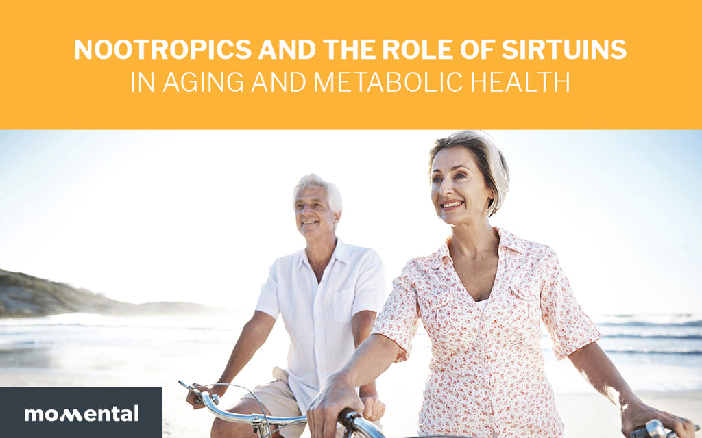 Nootropics and the Role of Sirtuins in Aging and Metabolic Health | Momental