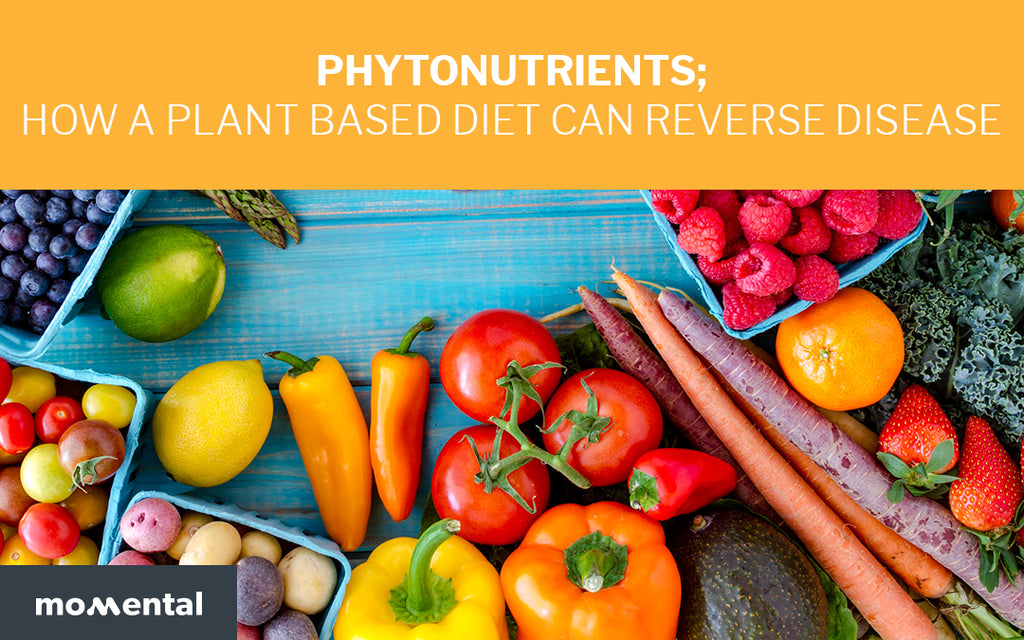 Phytonutrients How a Plant Based Diet Can Reverse Disease | Momental Nootropics