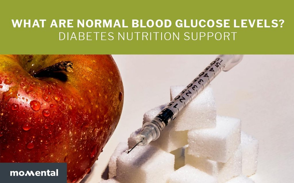 What Are Normal Blood Glucose Levels? Diabetes Nutrition Support | Momental Nootropics