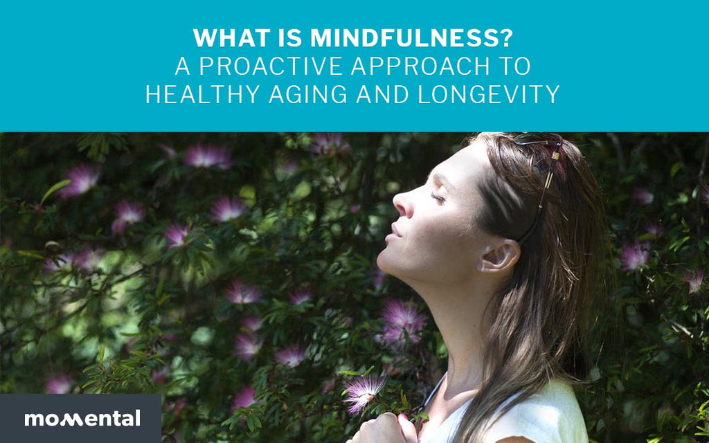 What Is Mindfulness? A Proactive Approach to Healthy Aging and Longevity | Momental Nootropics