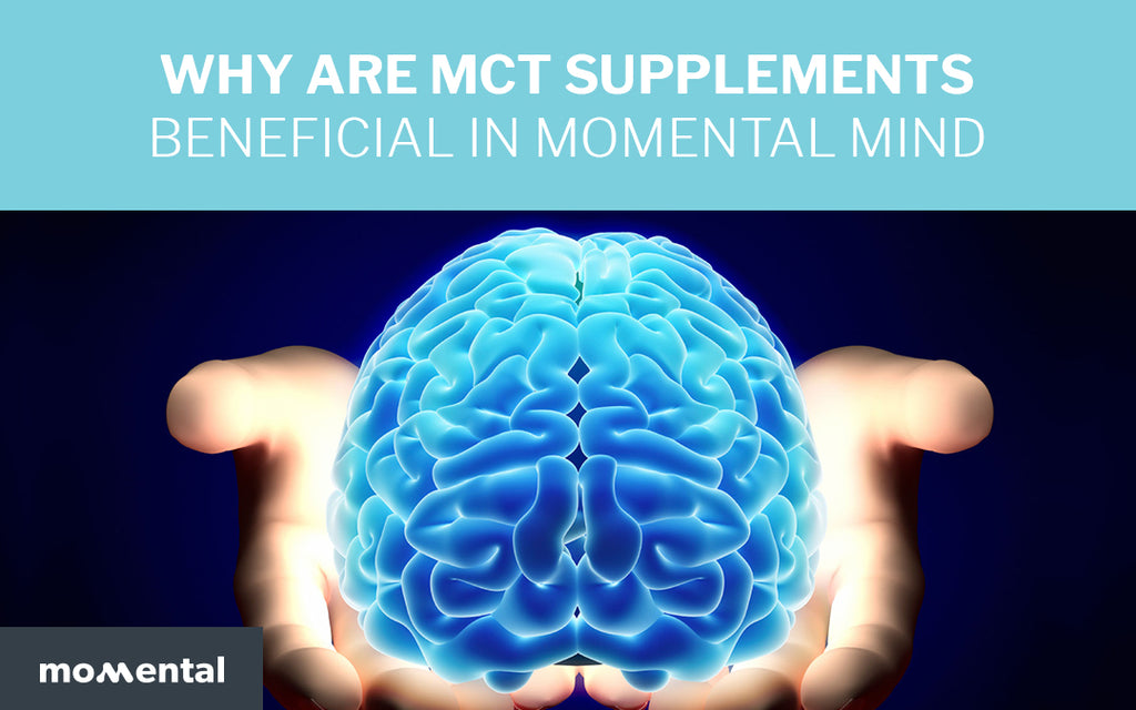 Why Are MCT Supplements Beneficial in Momental Mind? | Momental Nootropics