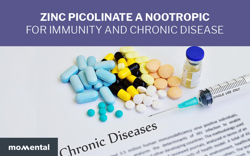 Zinc Picolinate is A Nootropic for Immunity and Chronic Disease | Momental Nootropics