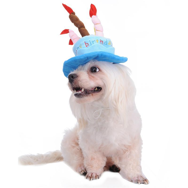 Dog Happy Birthday Hat