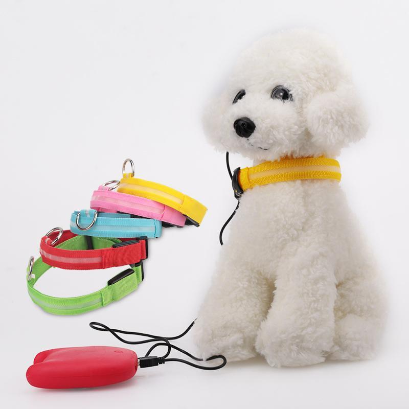 Safety LED Night Glow Pet Collar