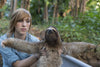 How can I get a job with sloths?