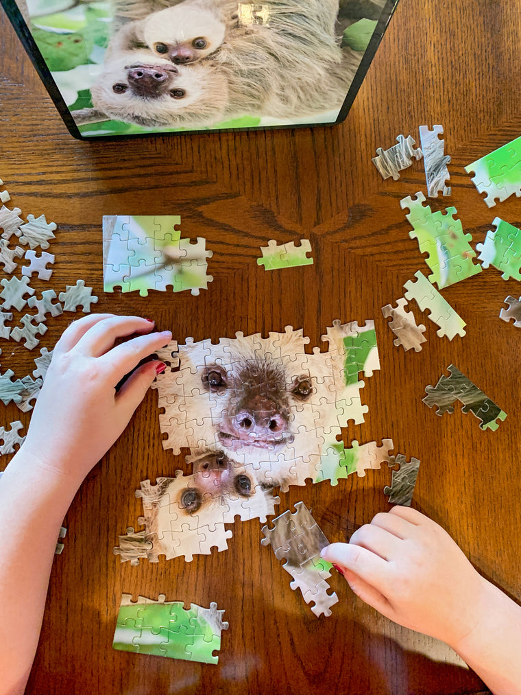Sloth Photo Puzzle with Tin Box