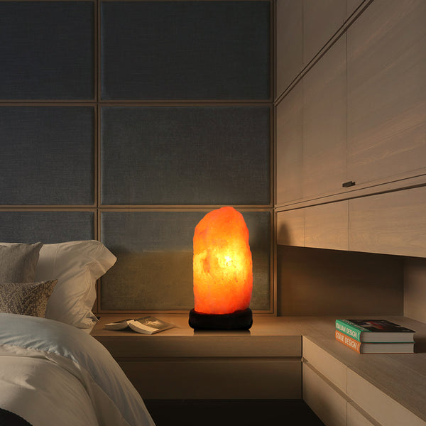 Himalayan Salt Lamp With Dimmer Switch - Crystals Are Cool