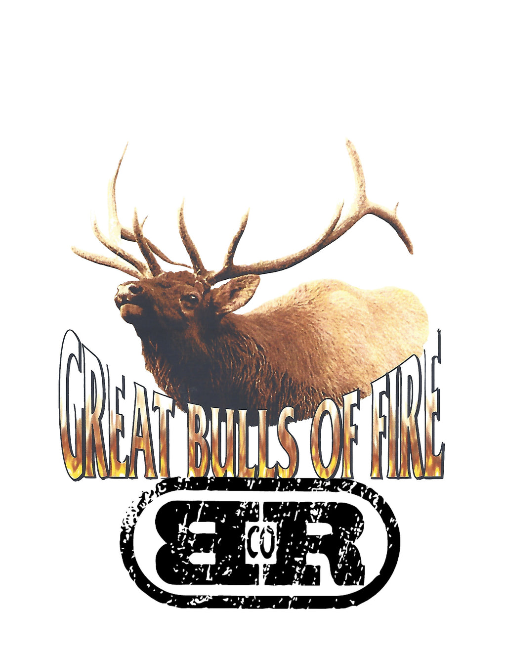 Classic Rock Great Bulls of Fire