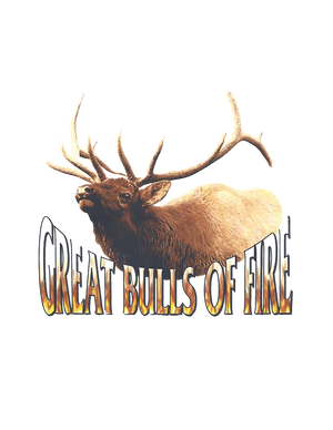 Vintage Rock Great Bulls of Fire