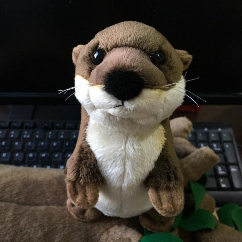 Image of otter plush toy - Gifts For Family Online