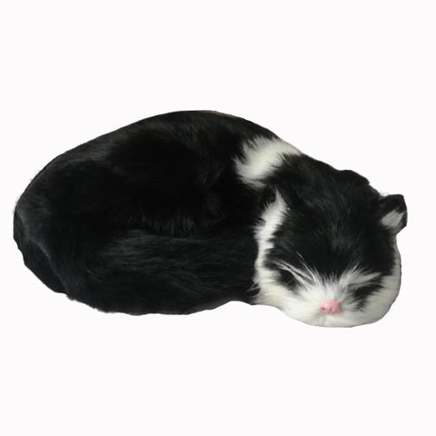 Image of realistic sleeping cat - Gifts For Family Online