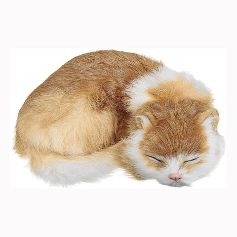 cat stuffed animals - Gifts For Family Online