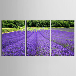 3 Panel Modern Lavender Flowers Canvas Painting on Canvas Wall Art Pictures Home Decor Living Room