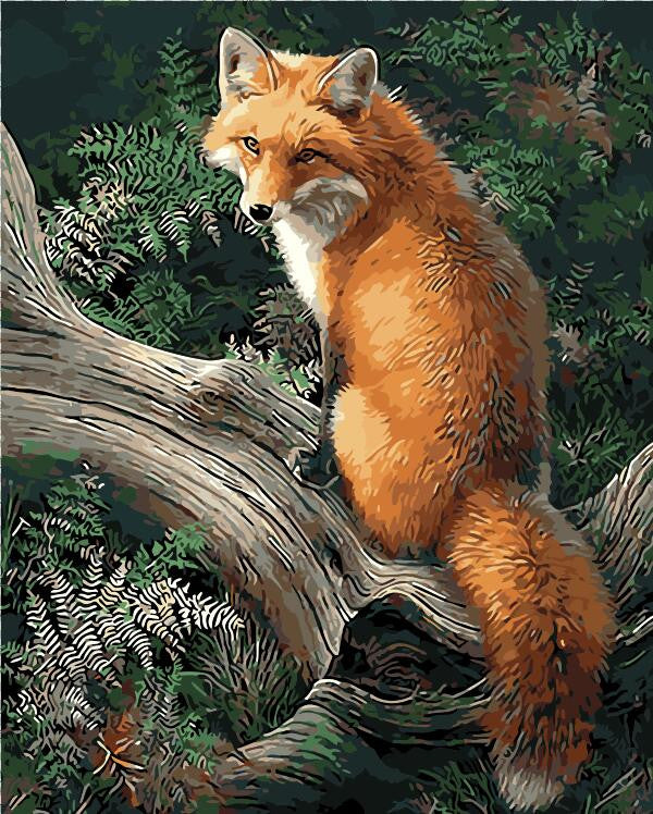 Fox Animals DIY Painting By Numbers Kits Paint On Canvas Acrylic Coloring By Numbers  Wall Decor