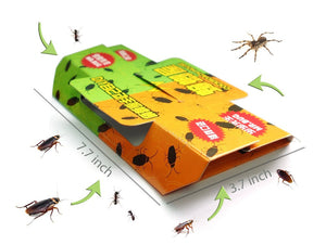 ECO Home Pest Control Trap, Cockroach Killer Bait Trap Roach Gel Repeller Pest Reject Rats Non-toxic 5 Sets !