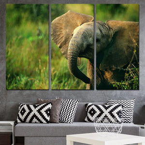 3 Panels Canvas Art Nature Baby Elephant Home Decor Wall Art Painting Canvas Prints Pictures for Living Room Poster