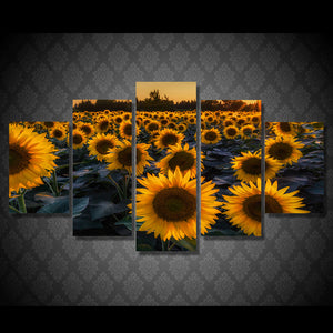 HD Printed Sunflower Field In Evening Painting Canvas Print Poster Picture Canvas