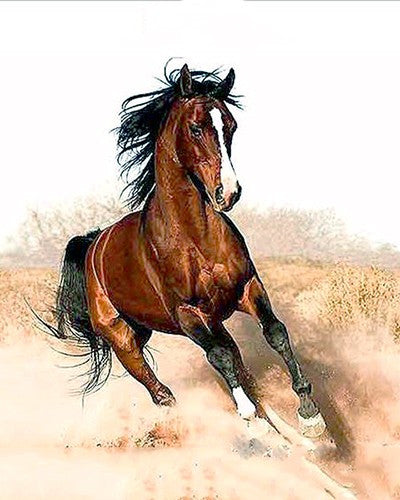 Running Horse Animal Landscape DIY Painting By Numbers Drawing Painting On Canvas HandPainted Home Decoration Artwork