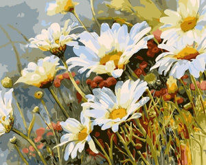 White Chrysanthemum Flower DIY Digital Painting By Numbers Hand Painted Oil Painting On Canvas